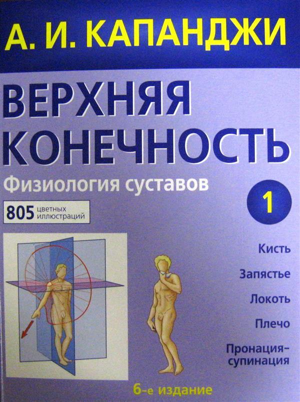 Верхняя конечность физиология суставов a.и капанджи лошадиная сила гель-бальзам для суставов цена