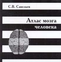 Атлас Мозга Человека Савельев скачать