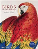Birds: The Art of Ornithology. Boxed Set обложка-превью