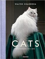 Walter Chandoha: Cats. Photographs 1942-2018 обложка-превью